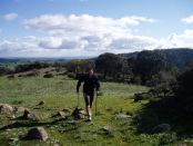 Nordic Walking in the Barossa Valley