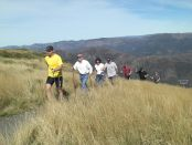 Nordic Walking at Mt Buller